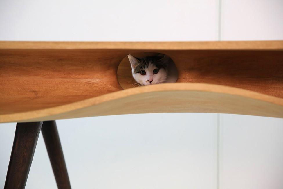 стол для котов и их хозяев