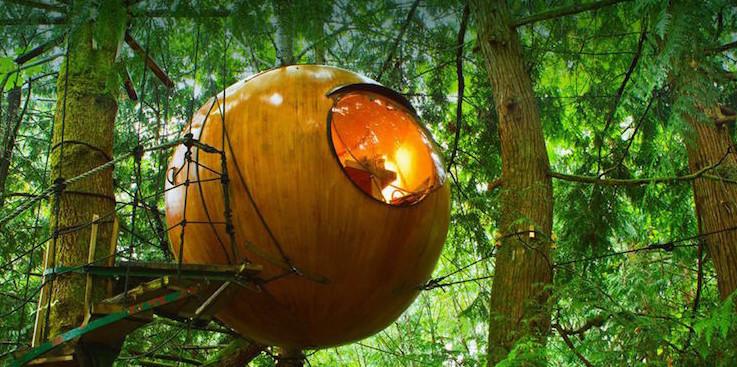 Этот канадский отель со сферическими домиками предлагает вам спать на деревьях
